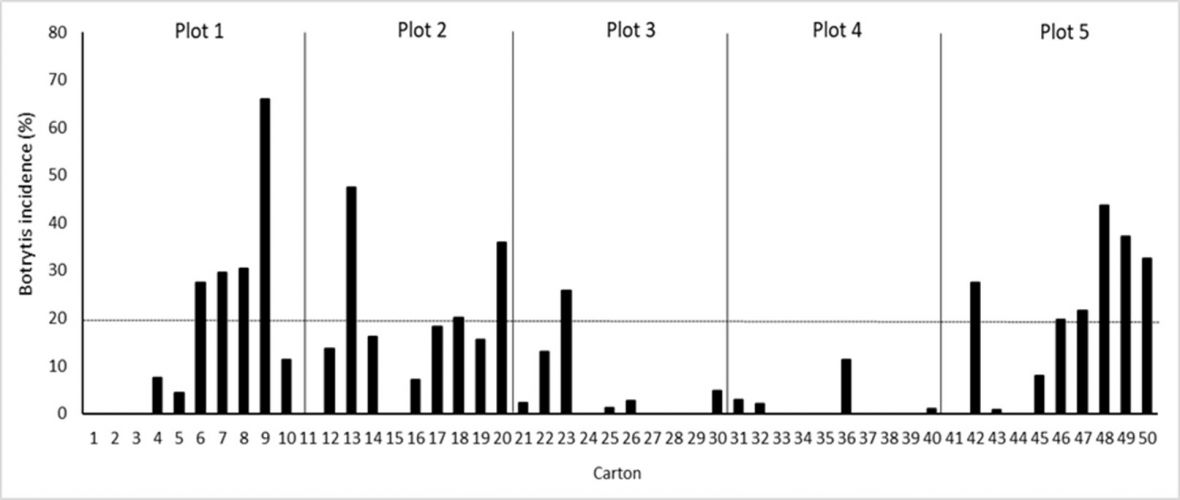 Graph: Botrytis rot incidence after incubation at harvest for 4 days at 18 °C among plots and cartons of 'Luisco' grapes in a commercial vineyard