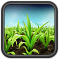 FieldView in itunes store