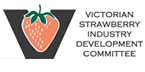 strawberry_sd_logo