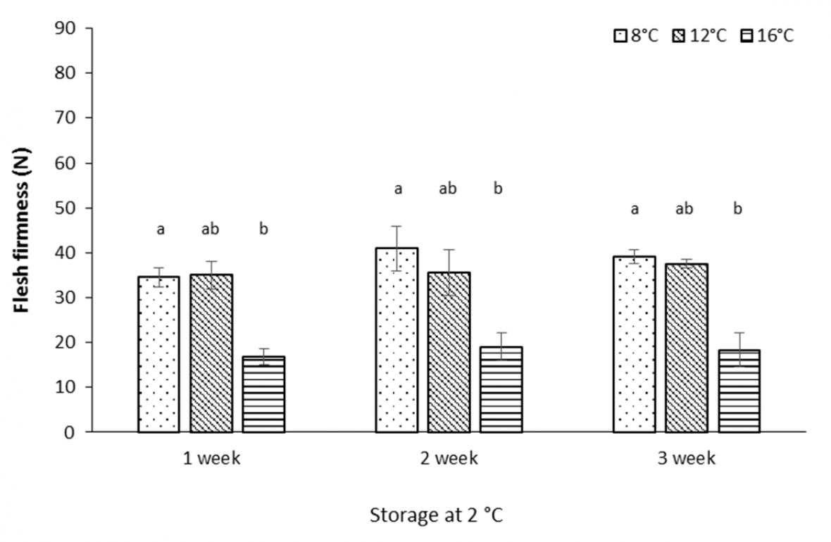 Graph:Effect of air freight temperature treatment, storage duration at 2 °C, and ripening at 18 °C for 3 days, on flesh firmness among 'Polar Queen' peach