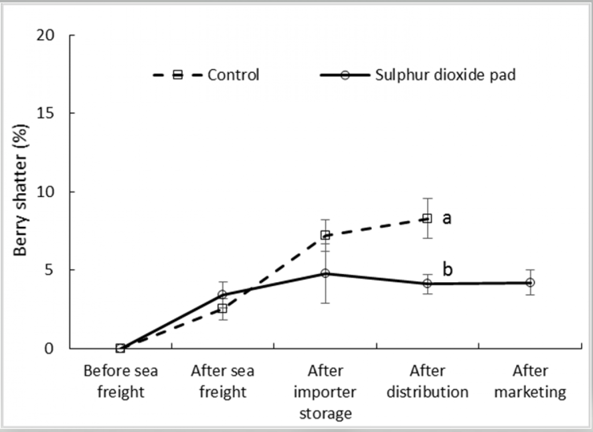 Figure 3. Effect of SO2 treatment and export stage on incidence of berry shatter