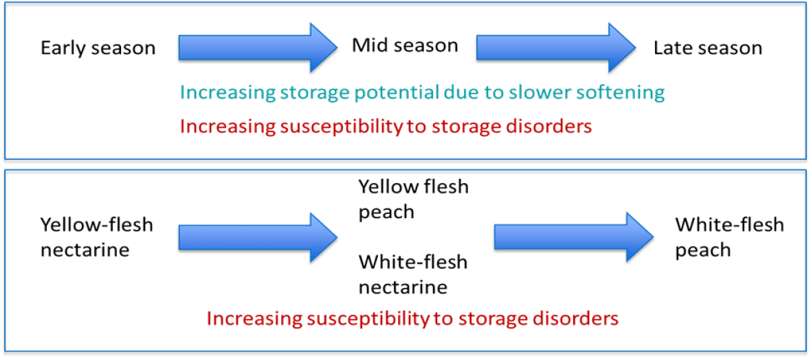 Increasing susceptibility of storage disorders