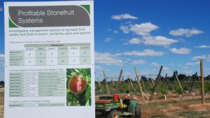 Stonefruit research orchard & equipment